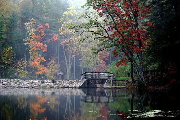 Autumn on Whipples Dam Photograph